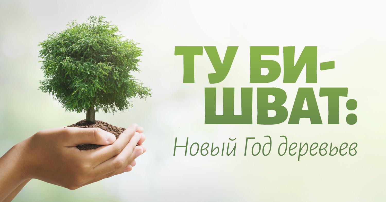 Ту би-Шват: Новый Год деревьев